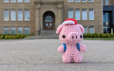 Schoolkid Pig Amigurumi Crochet Pattern